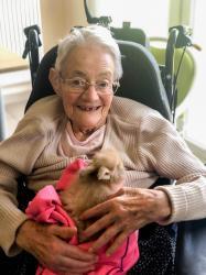 La médiation animale pour adoucir la vie des personnes âgées