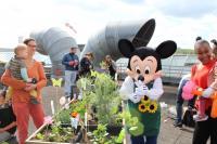 La magie de Disneyland au centre hospitalier